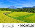 水田 稲 田畑の写真 49929380