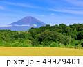 水田 稲 田畑の写真 49929401