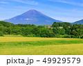 水田 稲 田畑の写真 49929579