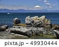 ビーチ 海岸 風景の写真 49930444