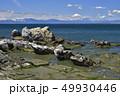 ビーチ 海岸 風景の写真 49930446