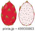 ドラゴンフルーツ 果物 果実のイラスト 49930863
