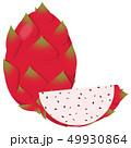 ドラゴンフルーツ 果物 果実のイラスト 49930864