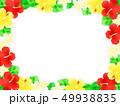 花 ハイビスカス プルメリアのイラスト 49938835