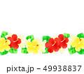 花 ハイビスカス プルメリアのイラスト 49938837