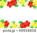 花 ハイビスカス プルメリアのイラスト 49938838