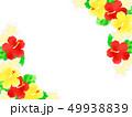 花 ハイビスカス プルメリアのイラスト 49938839