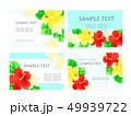 花 ハイビスカス プルメリアのイラスト 49939722