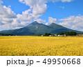 稲穂と磐梯山(福島県・猪苗代町) 49950668