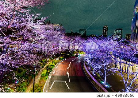 【東京都】夜桜 49983666