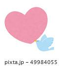 ハートと鳥 ベクター 49984055