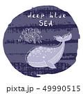 くじら クジラ 鯨のイラスト 49990515