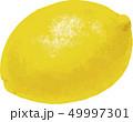 フルーツ レモン 果物のイラスト 49997301