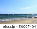 津久井浜(春) 50007404
