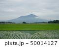 筑波山 50014127