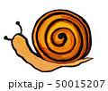 カタツムリ 50015207