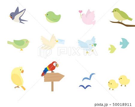 鳥 アイコンセット1 50018911