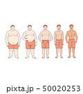 太い 脂 脂肪のイラスト 50020253