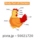 Diagram showing body part of chicken 50021720