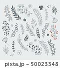 小枝 リーフ 葉のイラスト 50023348
