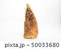筍 野菜 春の写真 50033680