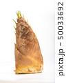 筍 野菜 春の写真 50033692