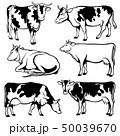 牛 動物 家畜のイラスト 50039670