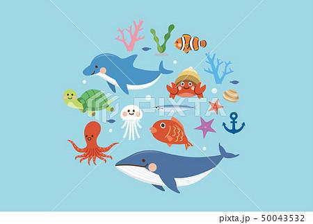 海の生き物 セット 50043532
