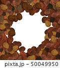 水彩 コーヒー テクスチャー コラージュ 50049950