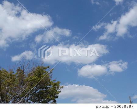 こじま公園での青空と白い雲 50059597