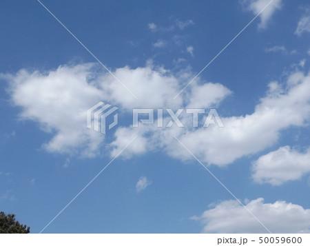 こじま公園での青空と白い雲 50059600