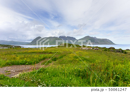 Norway scandinavian landscape with meadows 50061247