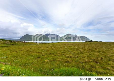 Norway scandinavian landscape with meadows 50061249