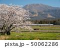 東海道新幹線 春 桜の写真 50062286