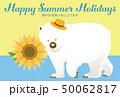 暑中見舞い 白熊 ベクターのイラスト 50062817
