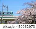 満開の桜と東京メトロ千代田線05系電車 50062973