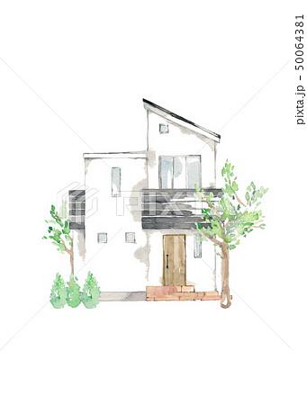 マイホーム、庭木、シンボルツリー 50064381