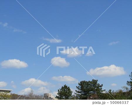 3月の青い空と白い雲 50066337
