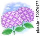 青紫系デュオ・青空 50070477