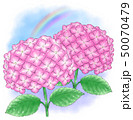アジサイ赤紫系デュオ・雨上がり 50070479