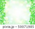 フレーム 葉 新緑のイラスト 50071985