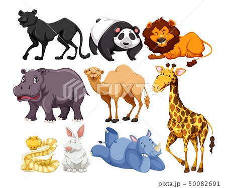wild life animal mix 50082691