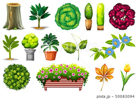 Set of ornamental plants 50083094