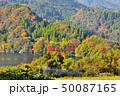 紅葉 蜂の巣湖 湖の写真 50087165
