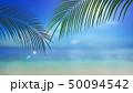 葉 夏 南国のイラスト 50094542