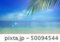 葉 夏 南国のイラスト 50094544