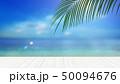 夏 南国 海のイラスト 50094676