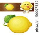 Whole lemon fruit illustration. Cartoon vector icon isolated on white background 50097339
