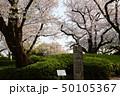横浜・山手公園 50105367