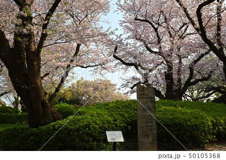 横浜・山手公園 50105368